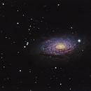 M63 - Sunflower Galaxy,                                David Augros