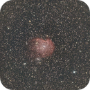 NGC 2175 - Monkey Head Nebula,                                Alex Vukasin