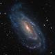 NGC 5033   An Offset Seyfert Nucleus Galaxy,                                Kevin Morefield