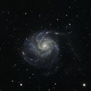 M101 - Pinwheel galaxy,                                Richard Kelley