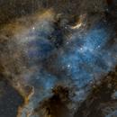 NGC 7000 North America Nebula - 3 panel mosaic,                                Albert  Christensen