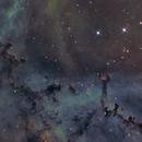 NGC 2237 / Sh2-275 / Rosette Nebula Globulettes,                                Falk Schiel