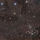 VDB 18 and NGC1342,                                Mark
