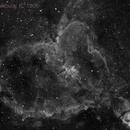 Heart Nebula, IC 1805,                                catatafish