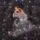 Eagle Head Nebula - LBN 777,                                Emil Pera