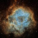 NGC 2237 - The Rosette Nebula,                                Alexjg