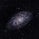 Triangulum Galaxy (M33),                                Daniel Caracache