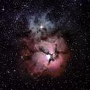 M20 The Trifid Nebula,                                Jeff Padell
