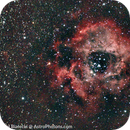 Rosette Nebula (NGC 2237, Caldwell 49),                                Paweł Białecki