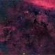 LDN881 Dark Nebula,                                Randal Healey
