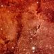 IC 1396 Nébuleuse de la trompe d éléphant,                                Alain L'ECOLIER
