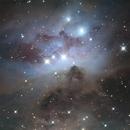 NGC 1977 - The Running Man Nebula,                                Danny Flippo