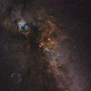 Cygnus widefield in SHO,                                Usernamealreadytaken