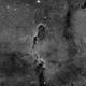 IC 1396 in Ha,                                Alan Hancox