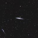 NGC4631 - Whale Galaxy,                                AstroDarkSky