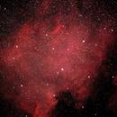 NGC 7000 Nebulosa Nord America,                                Massimiliano Zulian