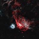 NGC 2014 from Chile in HOO,                                Glenn C Newell
