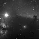 Barnard 33 ,                                David Chiron