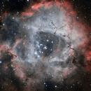 Rosette Nebula in HOO,                                Rabac Liviu