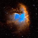 NGC281 - Pacman Nebula - SHO,                                Greg Polanski