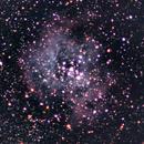 NGC 2244 Rosette Nebula,                                PghAstroDude