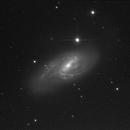 "M66 with my 1/4"" CCD,                                Heel Korbinian"