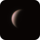 Venus,                                poblocki1982