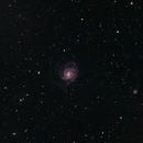 M101 - Pinwheel Galaxy at 480mm,                                Jared Holloway