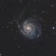 M101, Pinwheel Galaxy,                                Kathy Walker
