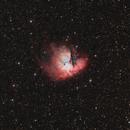 NGC 281 the PacMan nebula,                                Steve Coates