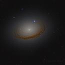 NGC 7049,                                Steven Marx