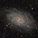 Messier 33,                                Jenafan