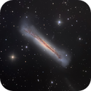 NGC 3628, The Hamburger Galaxy, HLRGB,                                Eric Coles (coles44)