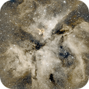 A single imaging run on Eta Carina Nebula. Always worth the visit!,                                Guillermo (Guy) Yanez