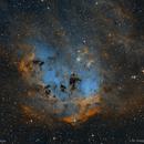 IC 410 - The Tadpoles Nebula,                                Jochem Maas