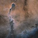 IC 1396 - Elephant Trunk Nebula (Bi-Color),                                Nathan Morgan (TheAstroNate)