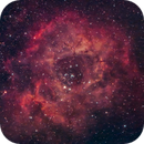 Rosette Nebula,                                Torben