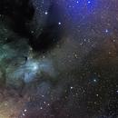 IC 4603,                                paddy36