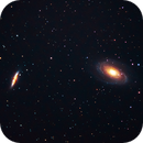 M81 and M82 (Cropped),                                Tommy Lease