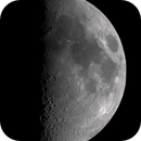 Half Moon,                                Wade Vargo