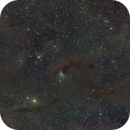 Barnard 7 and Barnard 10 Dark Nebula,                                Wilson Yam