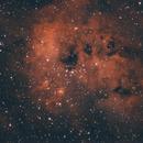 NGC1893,                                Martin Lysomirski