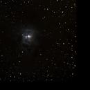 NGC7023,                                Daniele Viarani