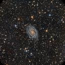 "NGC6384 with 24"" (full frame),                                KuriousGeorge"