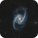 NGC 1365,                                Brian Peterson