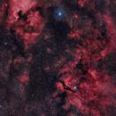 Cygnus Region - Widefield Mosaic,                                Oliver Czernetz