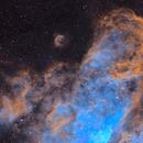 Northern arm of Eta Carina and Gum32,                                barx1963