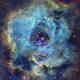 NGC 2237 Rosette Nebula,                                John Travis