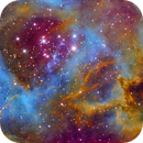 Rosette in Narrowband NGC 2237,                                Andy 01