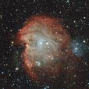 NGC 2175  Monkey Head Nebula,                                Doug Summers